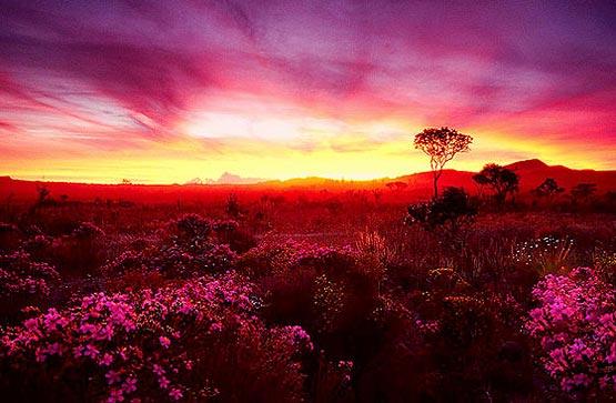 [paisagens09.jpg+por+do+sol+vermelho.jpg]